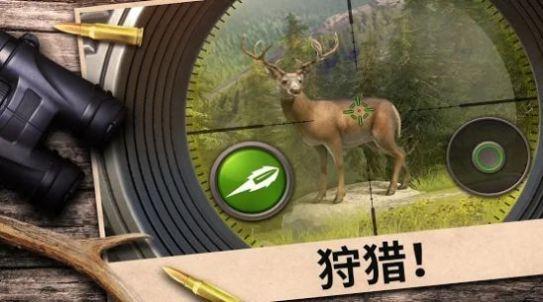 狩猎竞赛截图3